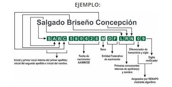 ELEMENTOS CURP ACTUALIZADO